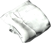 Breeches_White.png