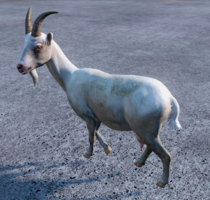Goat.png