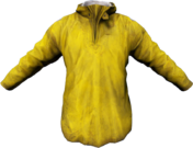 Raincoat_Yellow.png