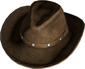 CowboyHat_darkBrown.png