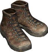 HikingBoots_Brown.png