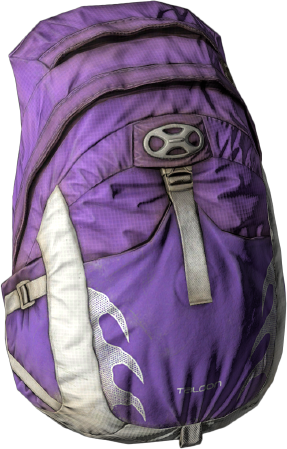 Taloon_Backpack_VIOLET.png